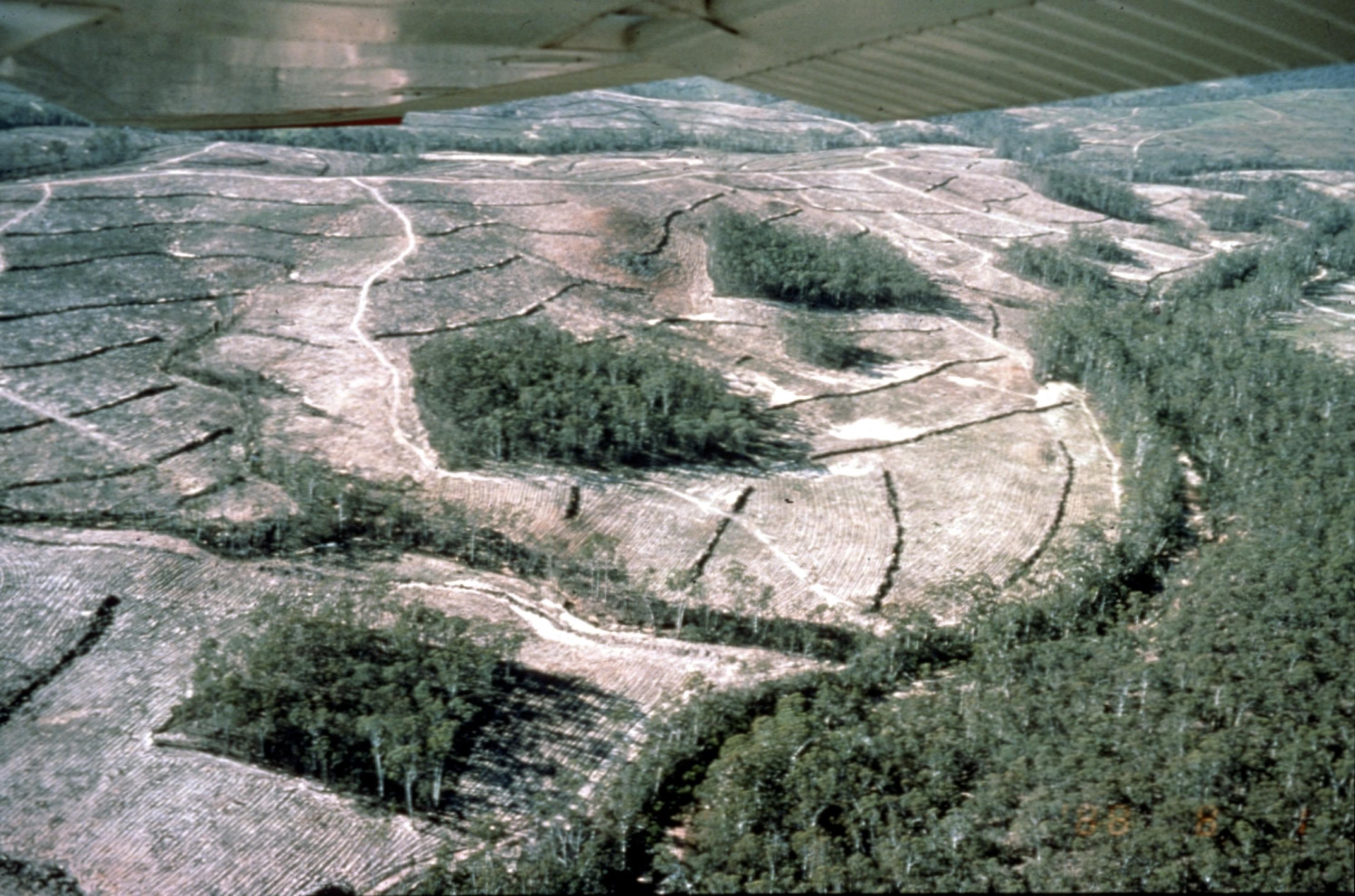 aerial photo2