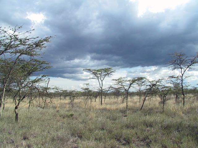 Acdr habitat